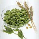 Protein Eiweiss